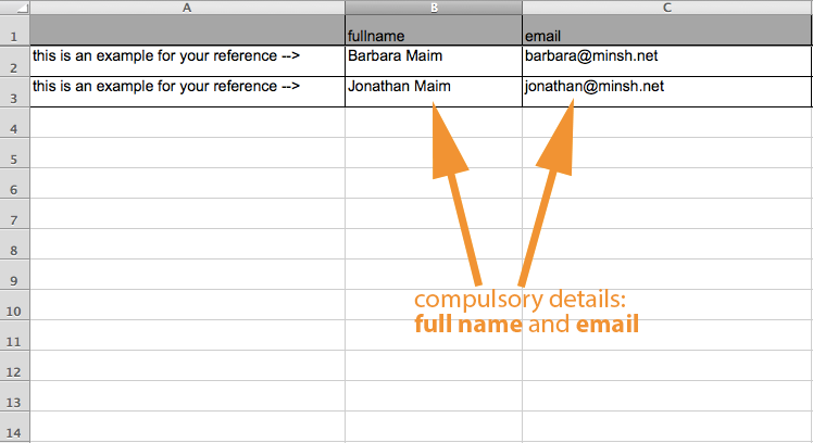 Full name and email address are comulsory fields