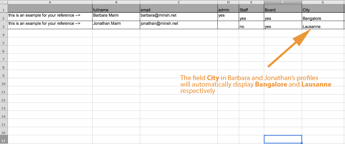 Add a column for each optional field and fill out each user's data